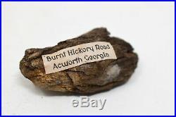 Rare Civil War Burnt Hickory Road Georgia Union Confederate Fired Shot Relic